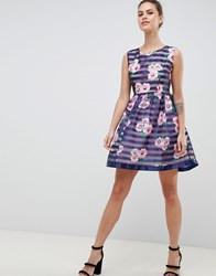Zibi London Floral And Striped Skater Dress Navy