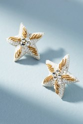 Suzanna Dai Caicos Starfish Post Earrings Gold