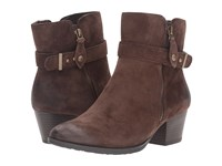Earth Royal Water Resistant Chestnut Suede Women's Boots Brown