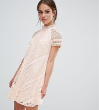Little Mistress Petite All Over Lace Mini Shift Dress Pink