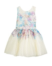 Zoe Ombre Floral Party Dress Multi