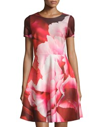 Julia Jordan Floral Print Short Sleeve Fit And Flare Dress Red Multi