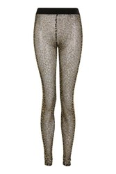 Jaded London Black And Gold Glitter Mesh Leggings By Black