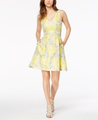 Donna Ricco Embroidered Fit And Flare Dress Yellow Ivory