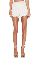 Endless Rose High Waisted Lace Shorts Ivory