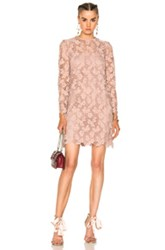 Valentino Embellished Lace Long Sleeve Dress In Pink Neutrals Pink Neutrals