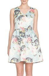 Cynthia Steffe Women's Cece Floral Fit And Flare Dress