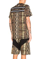 Givenchy Python Print Tee In Animal Print Yellow Brown Animal Print Yellow Brown