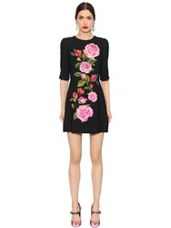 Dolce And Gabbana Roses Printed Cady A Line Dress