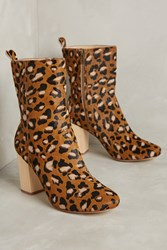 Anthropologie Farylrobin Dav Boots Novelty