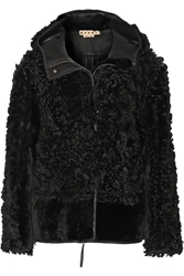 Marni Hooded Shearling Jacket