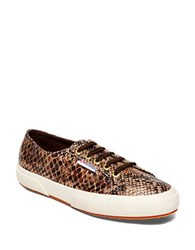 Superga Snake Print Lace Up Sneakers Brown