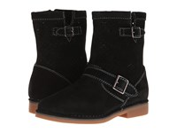 Hush Puppies Aydin Catelyn Perf Black Suede Women's Pull On Boots
