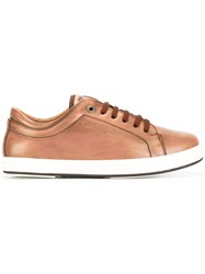 Salvatore Ferragamo Newport Sneakers Brown