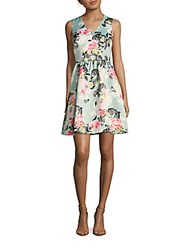 Cynthia Steffe Rose Floral Fit And Flare Dress Pinkini