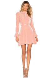 Donna Mizani Stardust Mini Dress Blush