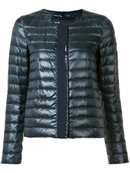 Herno Collarless Padded Jacket Blue