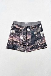 Urban Outfitters Desert Wolf Boxer Brief Multi