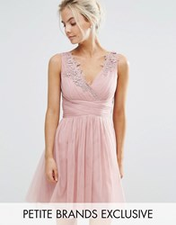 Little Mistress Petite Full Prom Tulle Mini Dress With Lace Applique Rose Pink