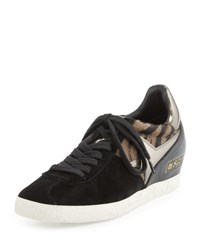 Ash Guepard Hidden Wedge Sneaker Clay Black Black Clay Black