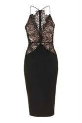 Contrast Scallop Lace Midi Dress By Rare Black