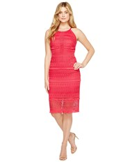 Laundry By Shelli Segal Fringe Venise Dress With Lace Inserts Bright Rose Women's Dress Pink