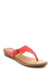 Godiva Buckle Thong Wedge Sandal Pink