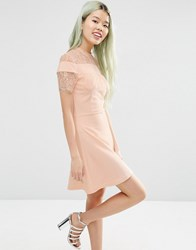 Asos Ponte Skater Dress With Mesh And Lace Insert Blush