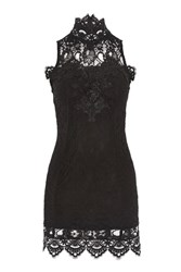 Rare High Neck Lace Applique Dress By Black