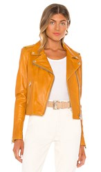 Lamarque Donna Moto Jacket In Yellow. Honey