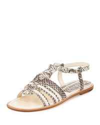 Manolo Blahnik Canale Snakeskin Caged Flat Sandal Natural Women's