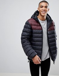 French Connection Padded Hooded Jacket With Contrast Panel Black