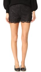 Cupcakes And Cashmere Estelle Scalloped Edge Lace Shorts Black