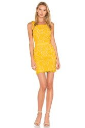 Endless Rose Tied Strap Lace Mini Dress Yellow