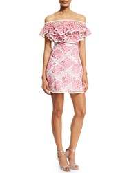 Alexis Paula Floral Popover Mini Dress Pink White Size L Pink And White