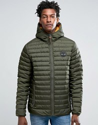 Timberland Lightweight Hooded Down Jacket In Green Forest Night