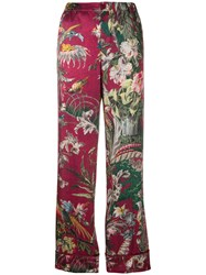 F.R.S For Restless Sleepers Floral Print Trousers Pink And Purple