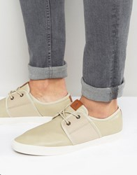 Aldo Hairedia Plimsolls Cream