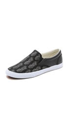 Bucketfeet Pineappleade Slip On Sneakers Black