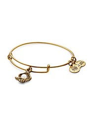Alex And Ani Oyster Charm Bangle Russian Gold