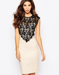 Paper Dolls Sweetheart Pencil Dress With Crochet Lace Overlay Creambodyblacklac