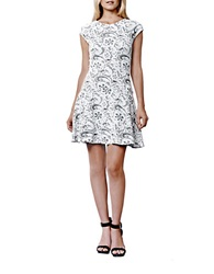 Julia Jordan Rio Lace Print A Line Dress Ivory Black
