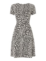 Oui Leopard Print Short Sleeve Dress Multi Coloured Multi Coloured