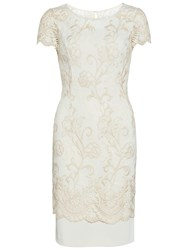 Gina Bacconi Metallic Embroidered Border Dress Light Gold