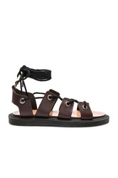 Dr. Martens Jasmine Ghillie Sandal Chocolate Brown