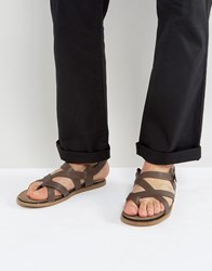 Zign Leather Sandals Brown