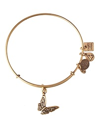 Alex And Ani Butterfly Expandable Wire Bangle Charity By Design Collection Rafaelian Gold