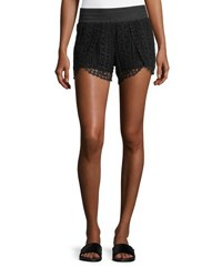 Chelsea And Theodore Pull On Lace Shorts Black