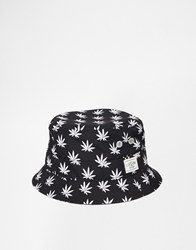 Cayler And Sons Budz 'N' Stripes Bucket Hat Black