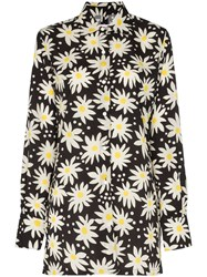 Solid And Striped Daisy Print Shirt Graphic